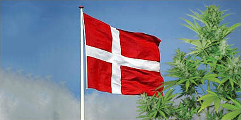 8 world march flag denmark 6 Year Old Cut From Basketball Team Because His Dad Smelled Like Weed