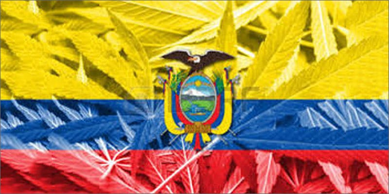 9 world march flag ecuador 6 Year Old Cut From Basketball Team Because His Dad Smelled Like Weed