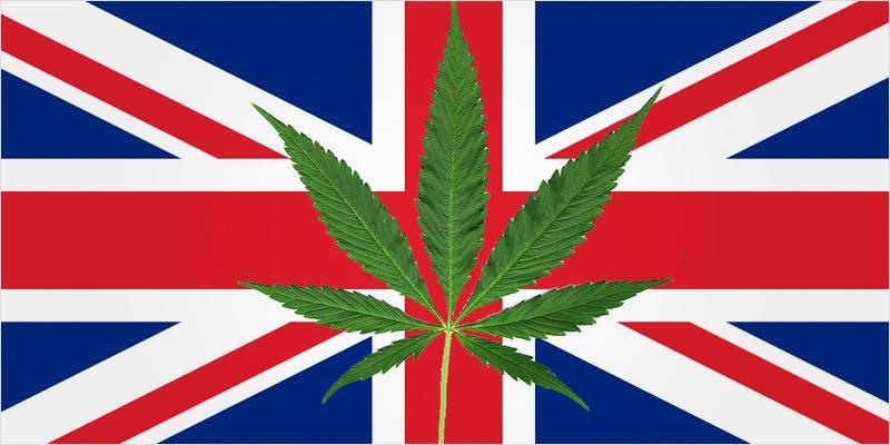First UK Clinical Trials 4 First UK Clinical Trials On Cannabis For Chronic Pain