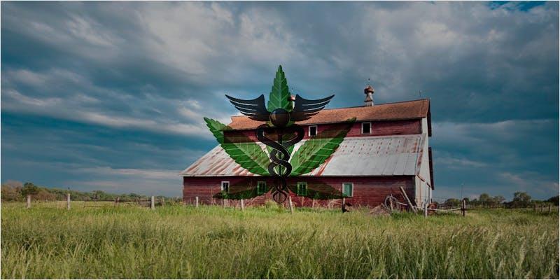 Nebraska Medical Cannabis