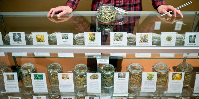 Scientists want to study marijuana 2 You Need To Read Gooeys New Book About Medical Cannabis