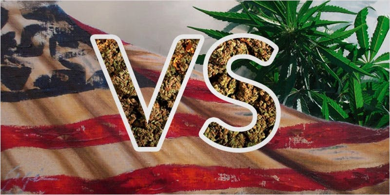 Scientists want to study marijuana 3 You Need To Read Gooeys New Book About Medical Cannabis