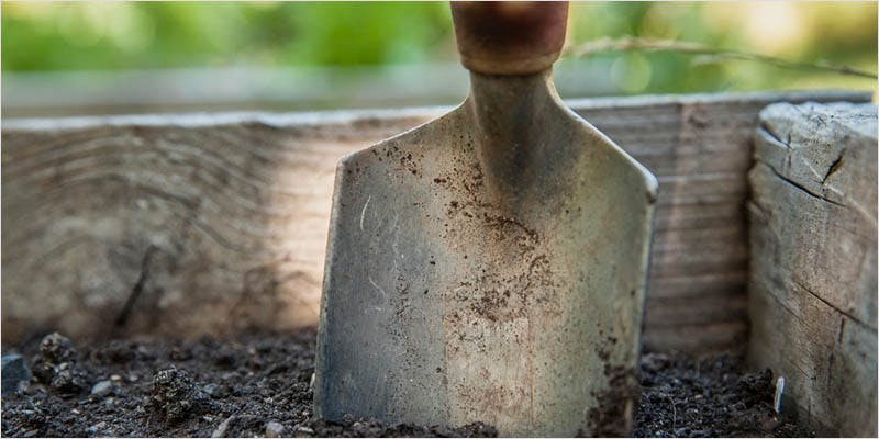 Soil2 3 6 Year Old Cut From Basketball Team Because His Dad Smelled Like Weed