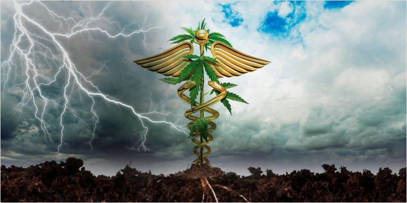 medical cannabis laws