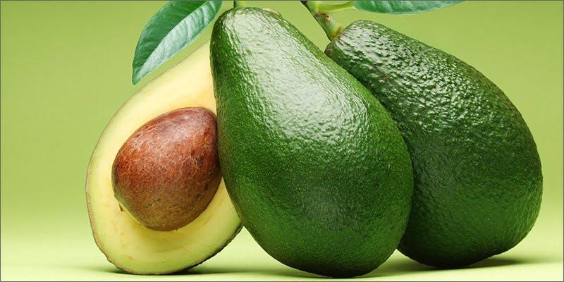 avocado pipe