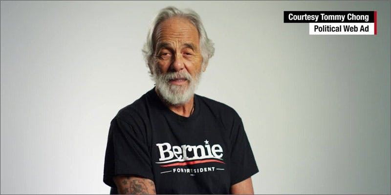 bernie legalize mj california chong You Need To Read Gooeys New Book About Medical Cannabis