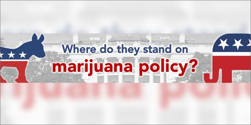 bernie legalizing pot mj policy graphic This New Pro Cannabis Mayor Is Revolutionising His Town