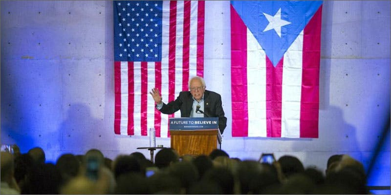 bernie legalizing pot puerto rico You Need To Read Gooeys New Book About Medical Cannabis