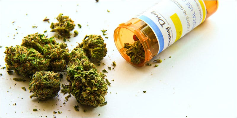 canadian mj delivery service prescription bottle You Need To Read Gooeys New Book About Medical Cannabis