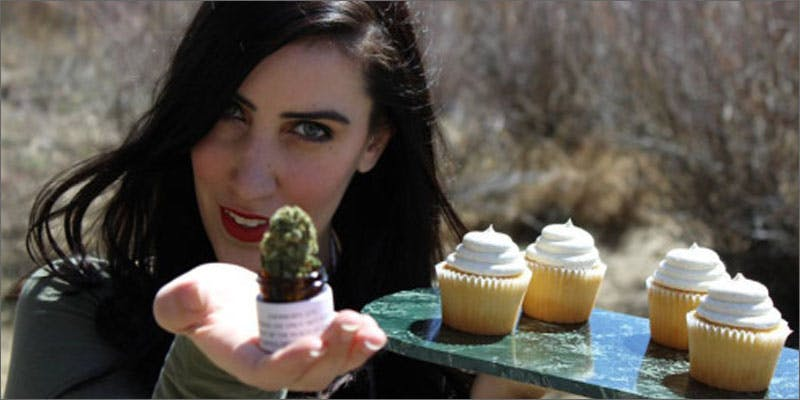 cooking with cannabis catalano cupcakes The Latest Cause For Concern With Colorado Cops