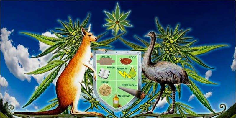 green scene australia 1 This New Pro Cannabis Mayor Is Revolutionising His Town
