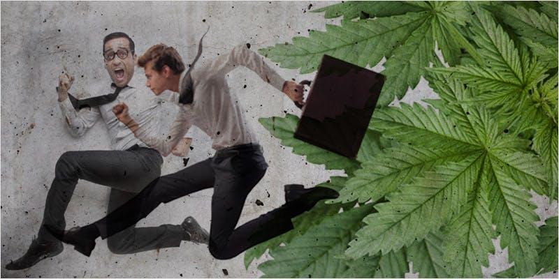 pro-cannabis mayor