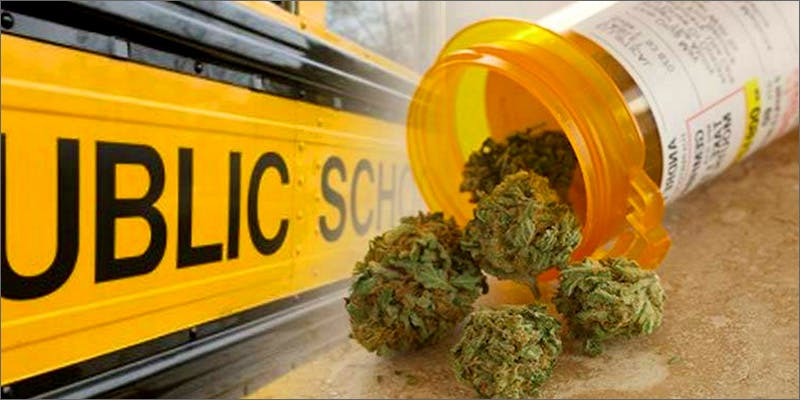 Medical marijuana In Schools