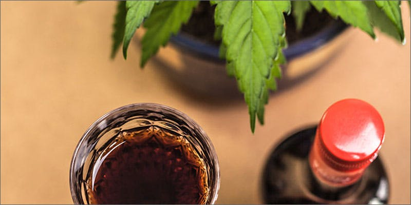 names for cannabis marijuana beverage You Need To Read Gooeys New Book About Medical Cannabis