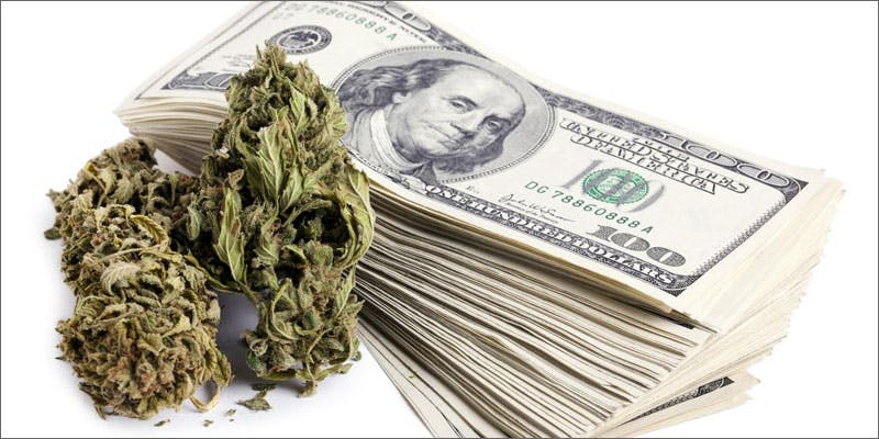 pennsylvania seeing green buds money You Need To Read Gooeys New Book About Medical Cannabis