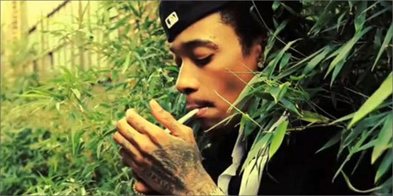 rapper strains wiz khalifa You Need To Read Gooeys New Book About Medical Cannabis