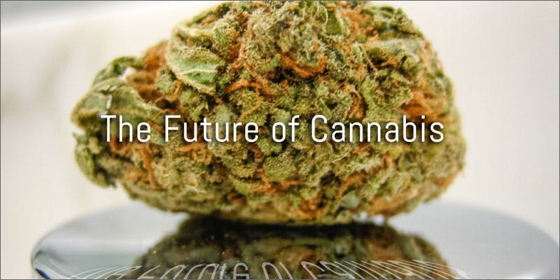 rebrand cannabis soccermom bud The Truth Is, Cannabis Is Maturing Out Of Its Stoner Youth