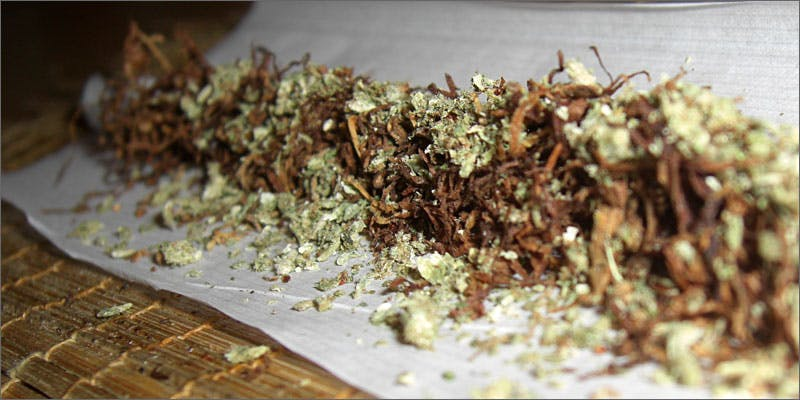 10 mixing tobacco and cannabis spliff in paper All In The Mind #5: Cannabis And Bipolar Disorder