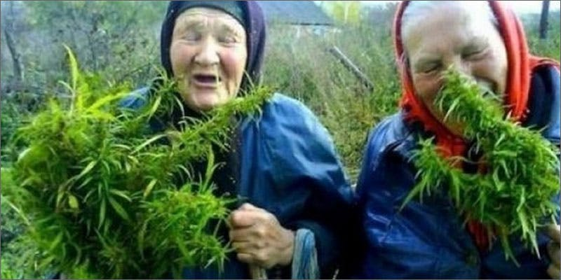 5 world names for cannabis russia plan A Touch Of Glass #25: Ladys Choice