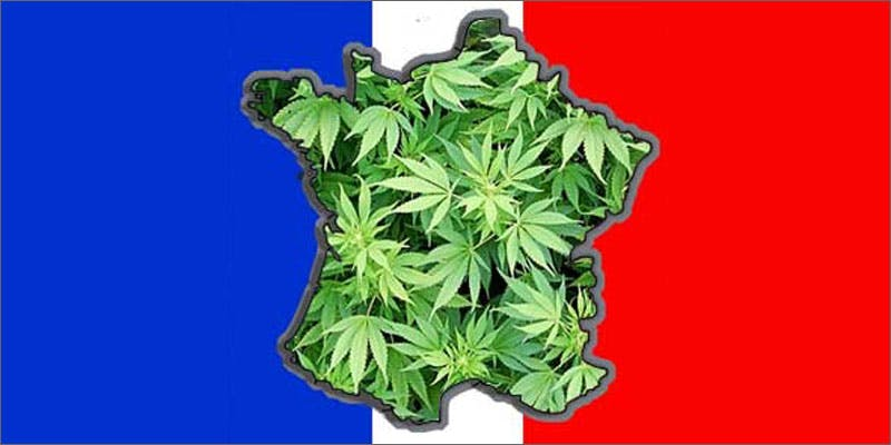 7 world names for cannabis france lherbe A Touch Of Glass #25: Ladys Choice