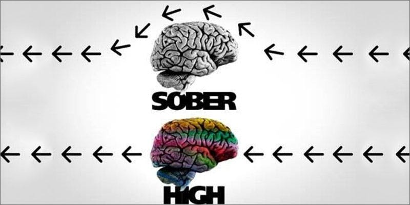 8 facts about getting high brain sober v high A Touch Of Glass #25: Ladys Choice