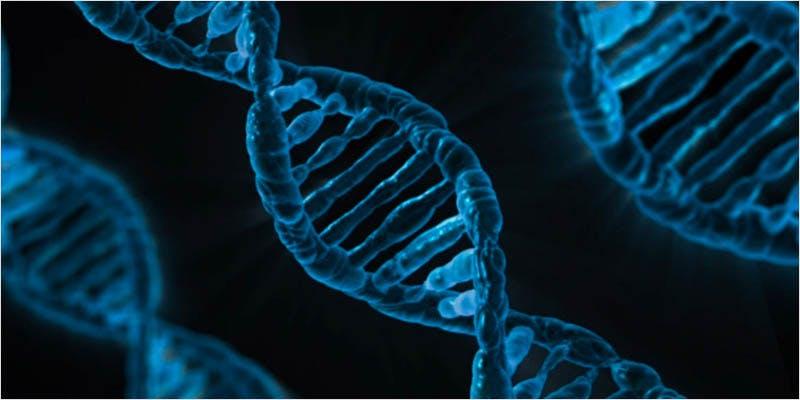 Epigenetic changes