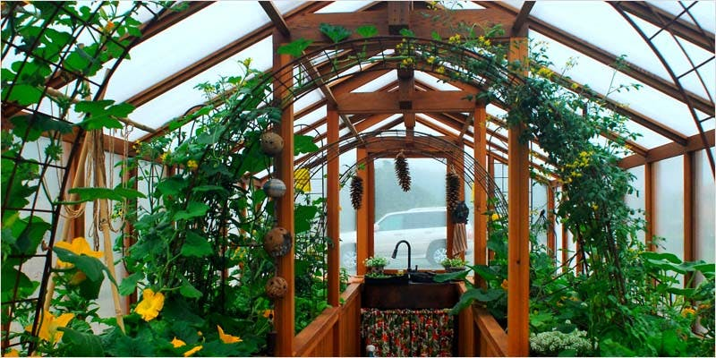 Greenhouse Grows are Awesome 10 Best Of Both Worlds: All You Need To Know About Greenhouse Grows