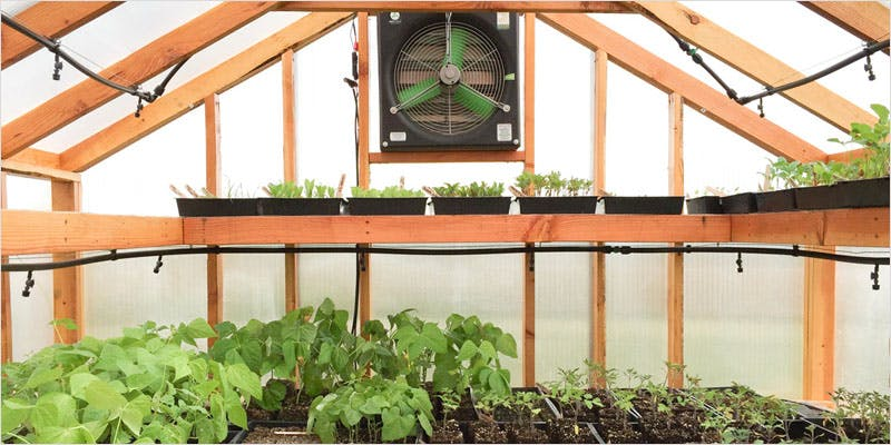 Greenhouse Grows are Awesome 13 Best Of Both Worlds: All You Need To Know About Greenhouse Grows