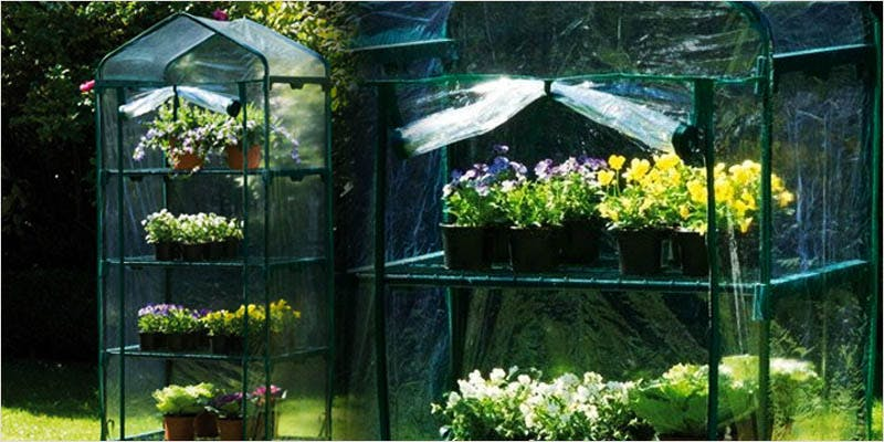 Greenhouse Grows are Awesome 9 Best Of Both Worlds: All You Need To Know About Greenhouse Grows