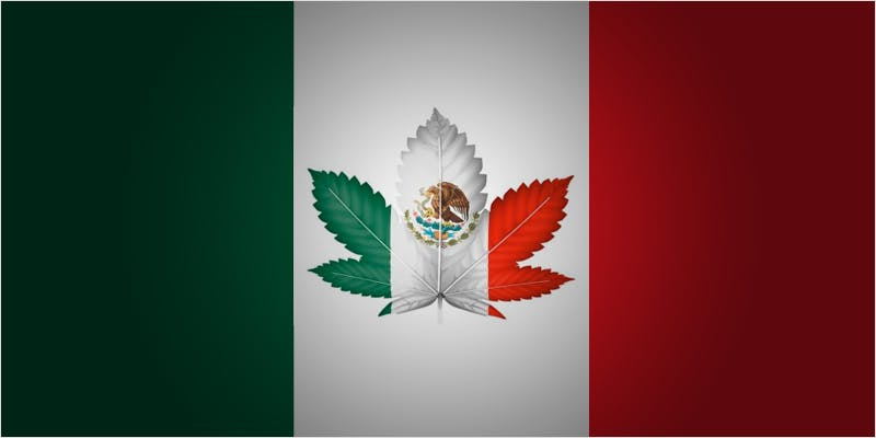 Mexicos president may be full hero 10 Things Youll Understand If Youre A 20 Something Weed Smoker