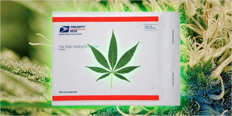 Patient Charged For Medical Marijuana 1 New Cannabis Toothpaste Has People Losing Their Minds