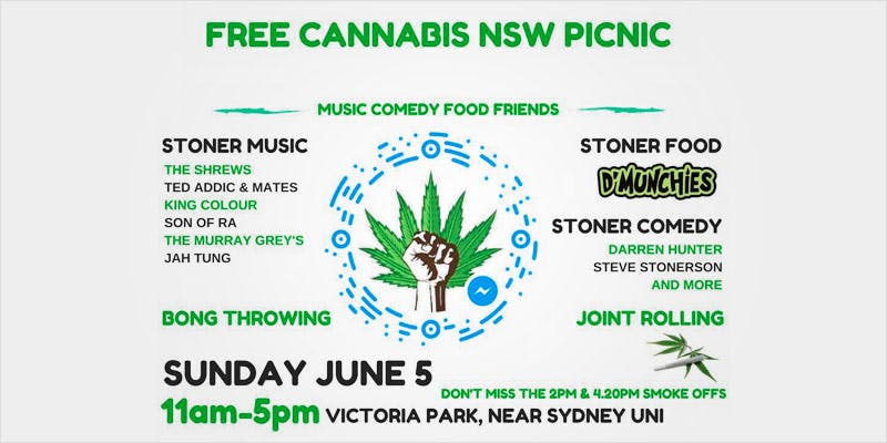 The Free Cannabis Picnic In Sydney 1 New Cannabis Toothpaste Has People Losing Their Minds