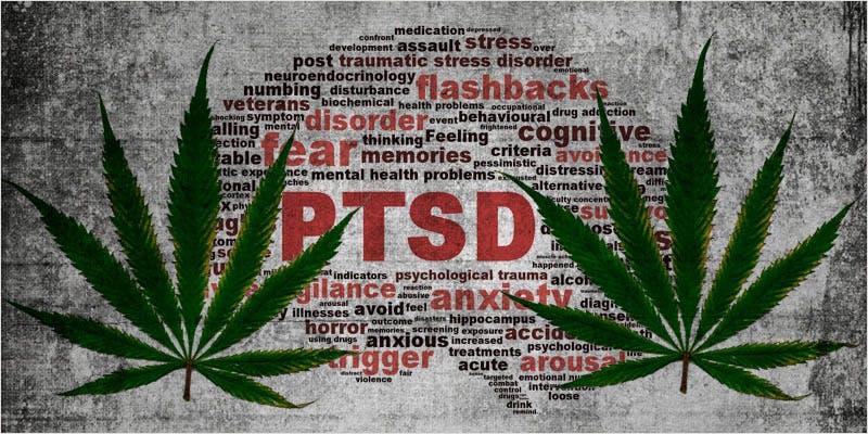 medical cannabis list