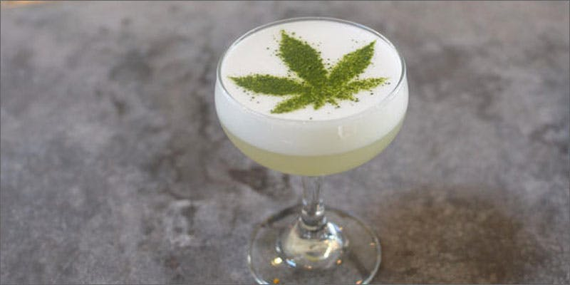 cannabis cocktails leaf on top Diaz Bros Spent 420 Getting High With The Wu Tang Clan