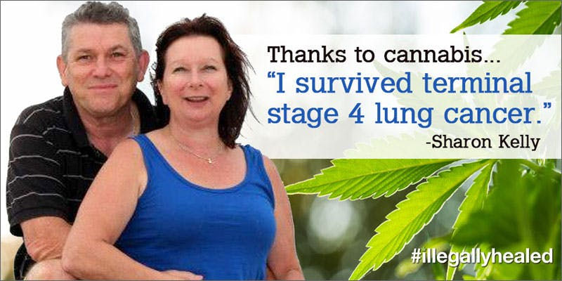cannabis cures terminal stage iv lung cancer testimonial Getting Weed In Jamaica Is Now Easy As Renting A Car