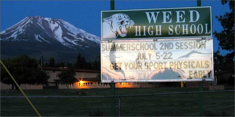 colorado record mj sales highschool Colorado Has Smashed All Previous Cannabis Sales Records