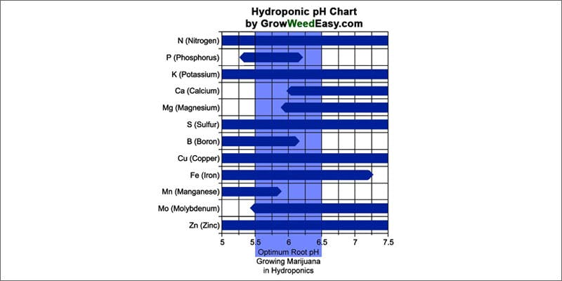 common mistakes new marijuana growers hydroponic chart Getting Weed In Jamaica Is Now Easy As Renting A Car