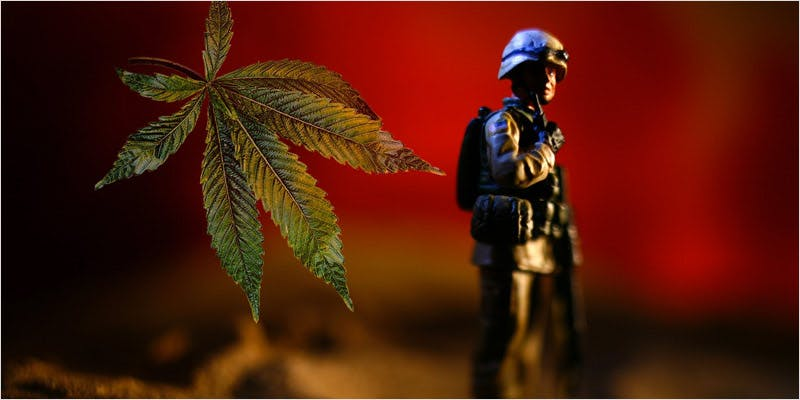 denies medical cananbis to vets 1 All In The Mind #5: Cannabis And Bipolar Disorder