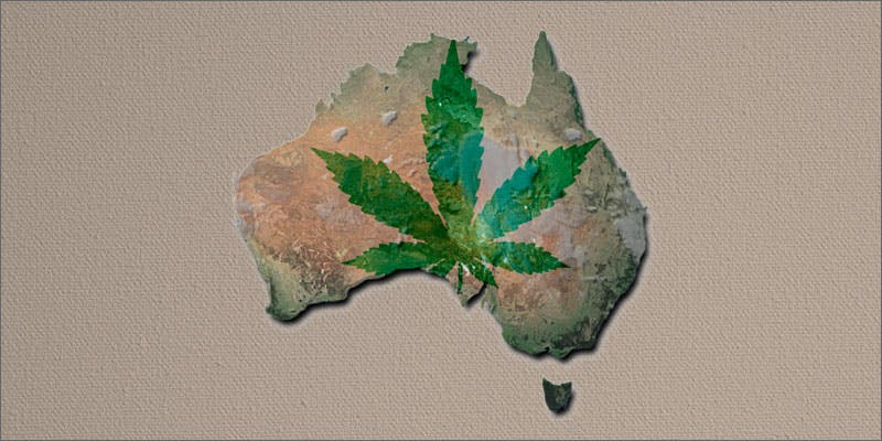 hunger strike medicinal cannabis plants siezed australia Getting Weed In Jamaica Is Now Easy As Renting A Car