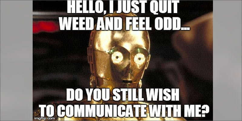 is cannabis withdrawal real thing quitting meme Is Cannabis Withdrawal A Real Thing?