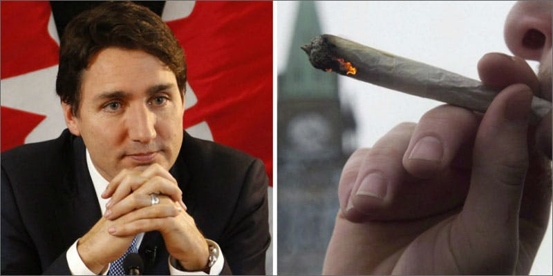justin trudeau cannabis legalization argument New Cannabis Toothpaste Has People Losing Their Minds