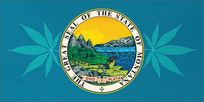 montana cannabis ballot hero The Californian Tax Glitch Is Great News For Medical Cannabis Patients