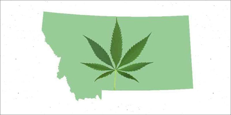 montana cannabis ballot leaf state 1 Why Are Cannabis Users Increasingly Being Denied Gun Rights?