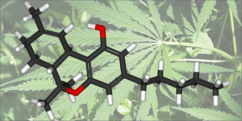 smoke more weed molecule A Touch Of Glass #25: Ladys Choice