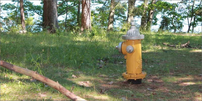 thomas gaskins fire hydrant Cop Busted Growing Weed In The Most Unbelievable Place