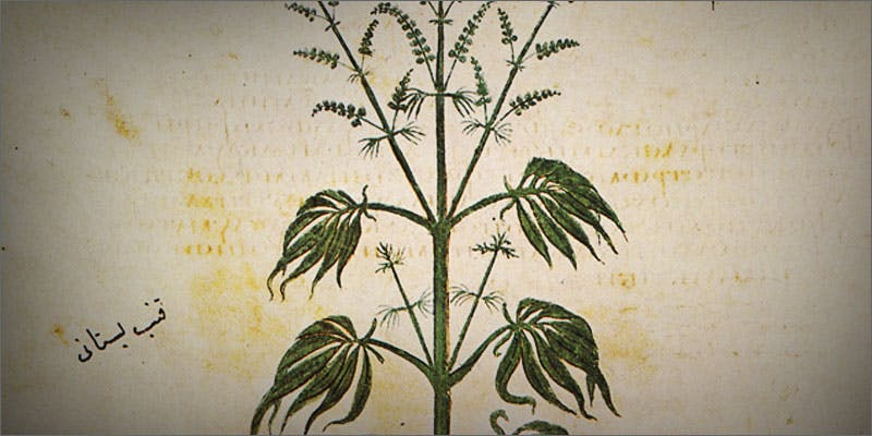 1 reasons hemp seeds must be in life ancient Cannabis And Sex: How Much Do You Really Know?