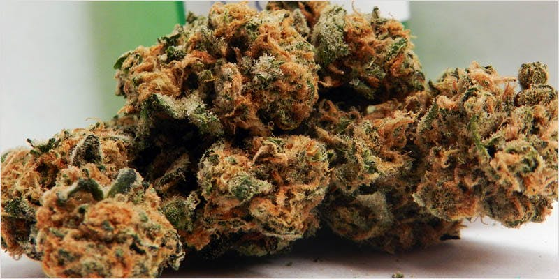 10 Legendary Canadian 2 Get Ready Florida! Legal Weed Will Be Yours Next Week