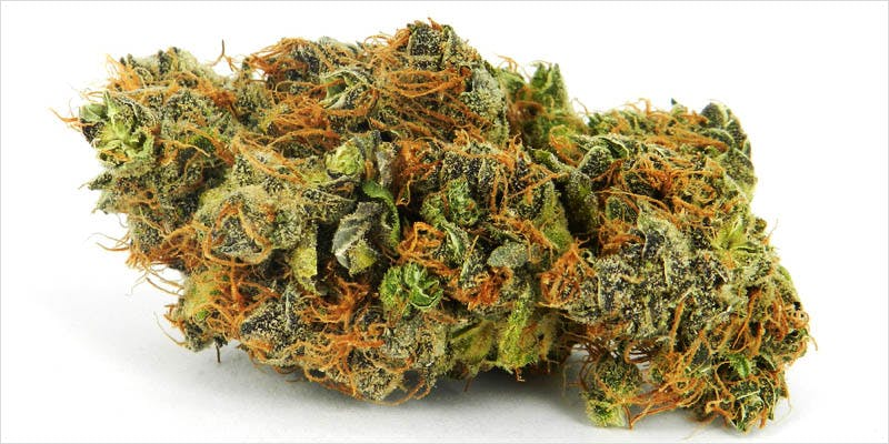 10 Legendary Canadian 5 10 Canadian Themed Strains That Celebrate The True North