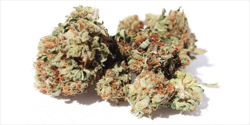 10 Legendary Canadian 7 Get Ready Florida! Legal Weed Will Be Yours Next Week