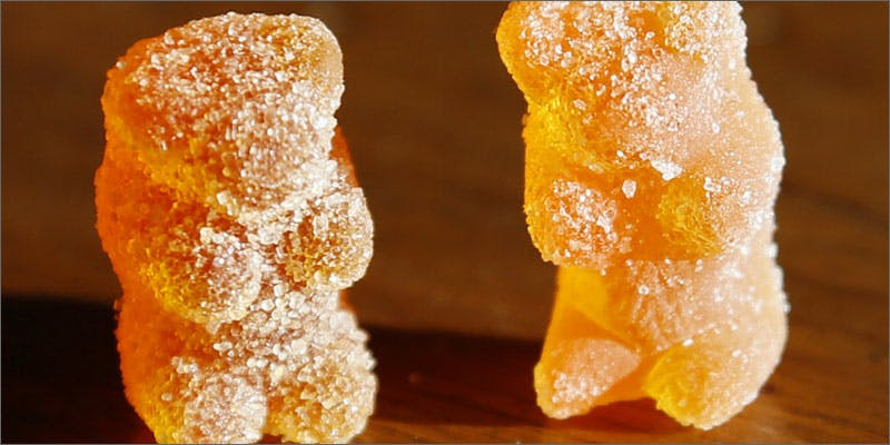 3 edible advice for newbies bears Nevada Has Issued Last Minute Changes To Legalization Laws